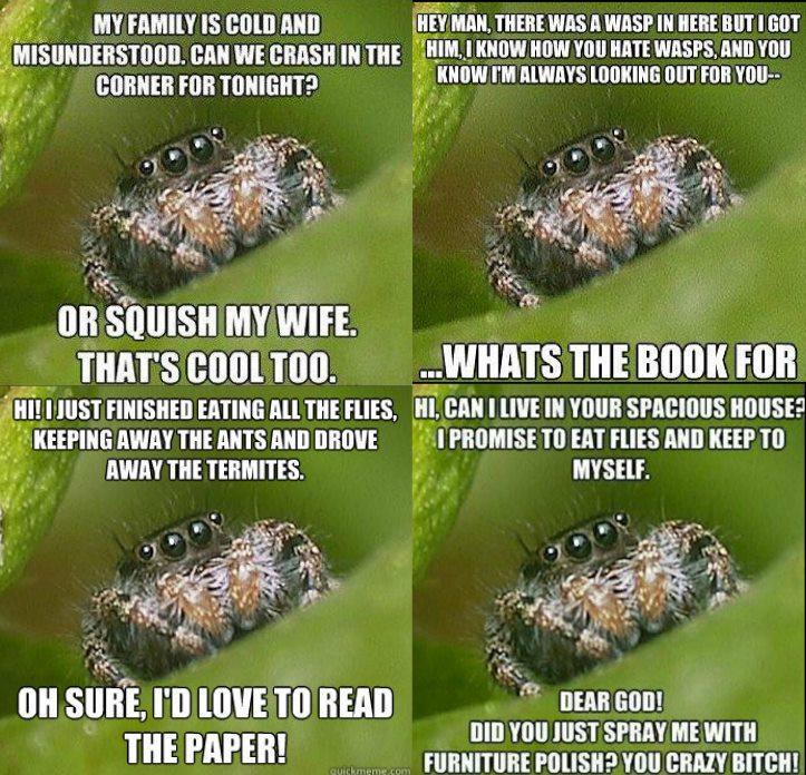 spider four memes